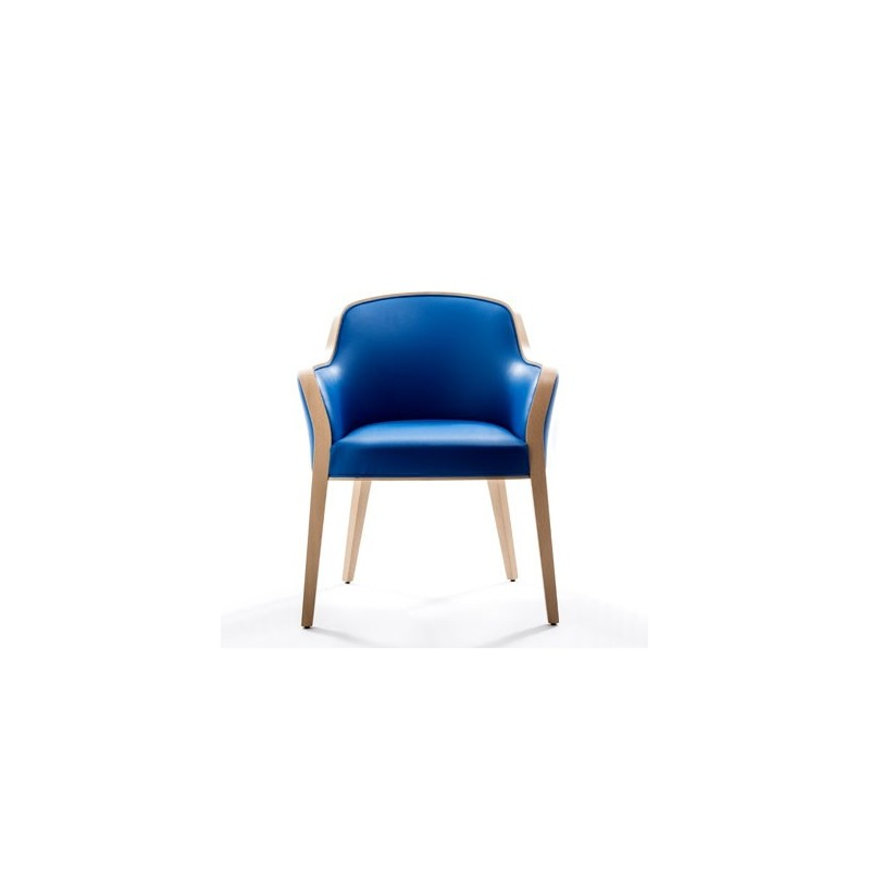 fauteuil senior wave avec accoudoirs mod le expo. Black Bedroom Furniture Sets. Home Design Ideas